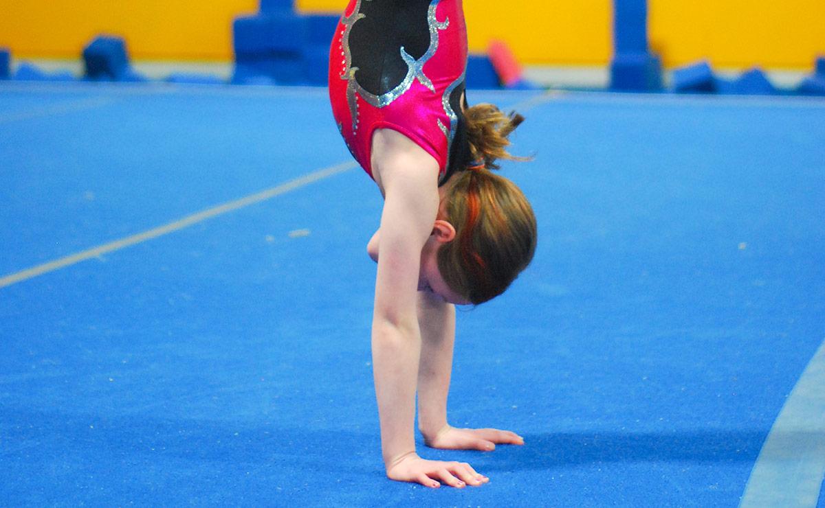 Adult Open Gymnastics
